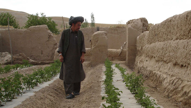 Afghanistan Irrigation