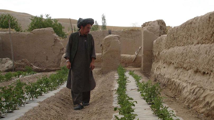 Afghanistan Irrigation